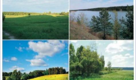 Покупаем земельные участки в Новосибирской области