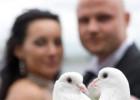 Кредит на организацию свадебного мероприятия
