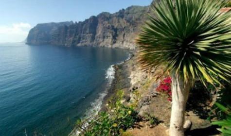 Все, что нужно знать туристу о недвижимости Тенерифе
