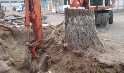 Как производится удаление пней деревьев?